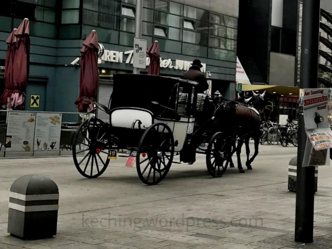 horse carriage vienna