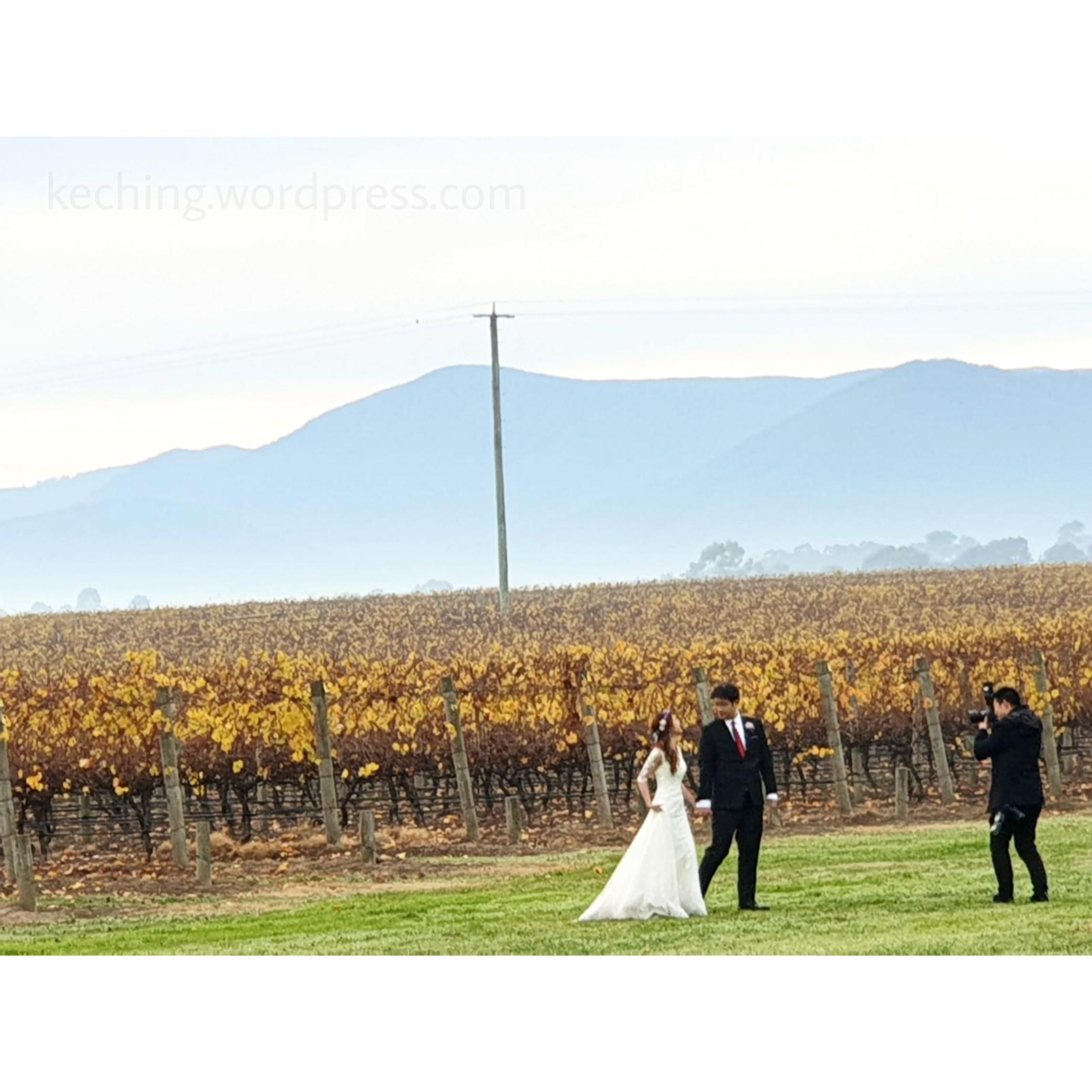 stones of the yarra valley wedding photos