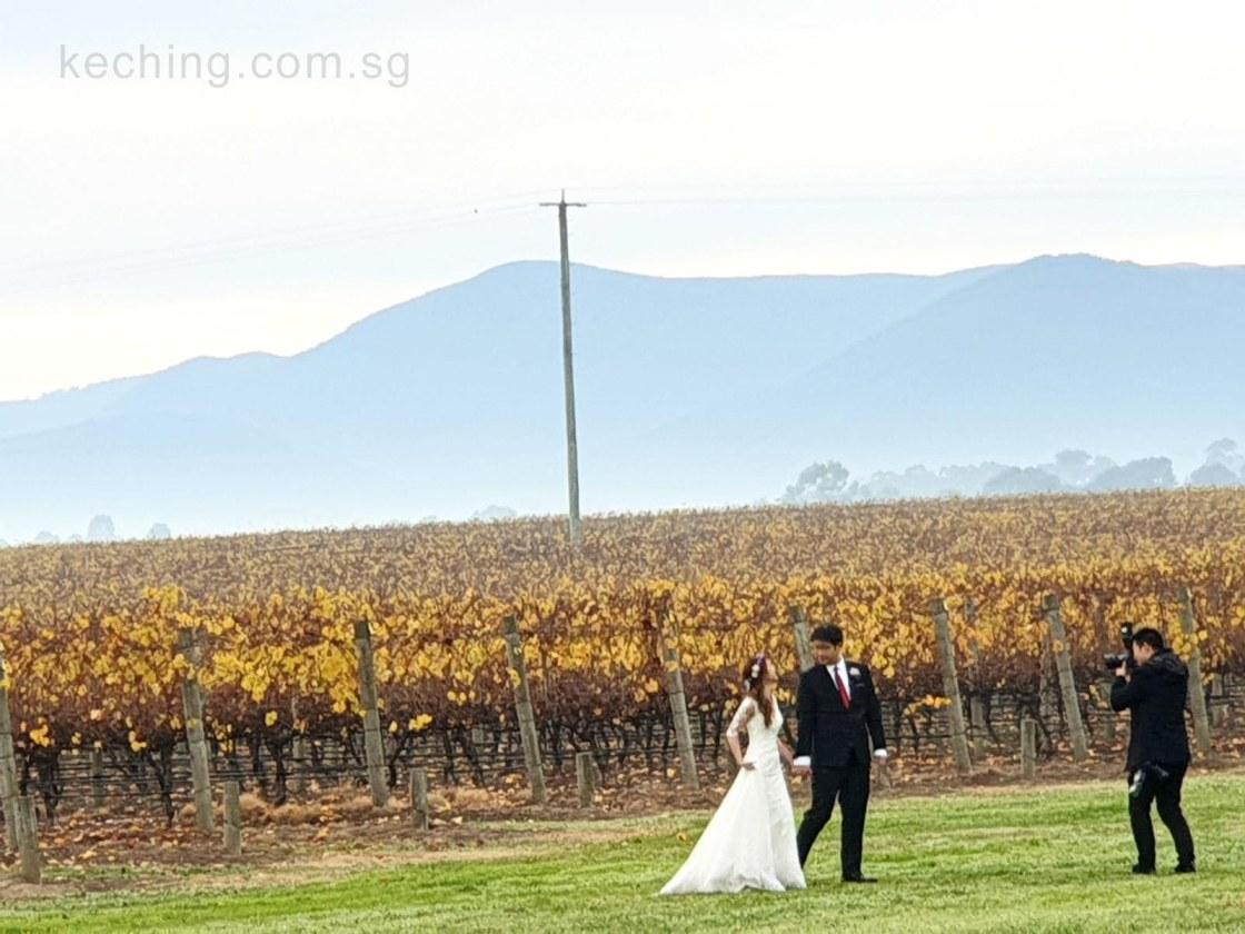 stones yarra valley wedding reviews
