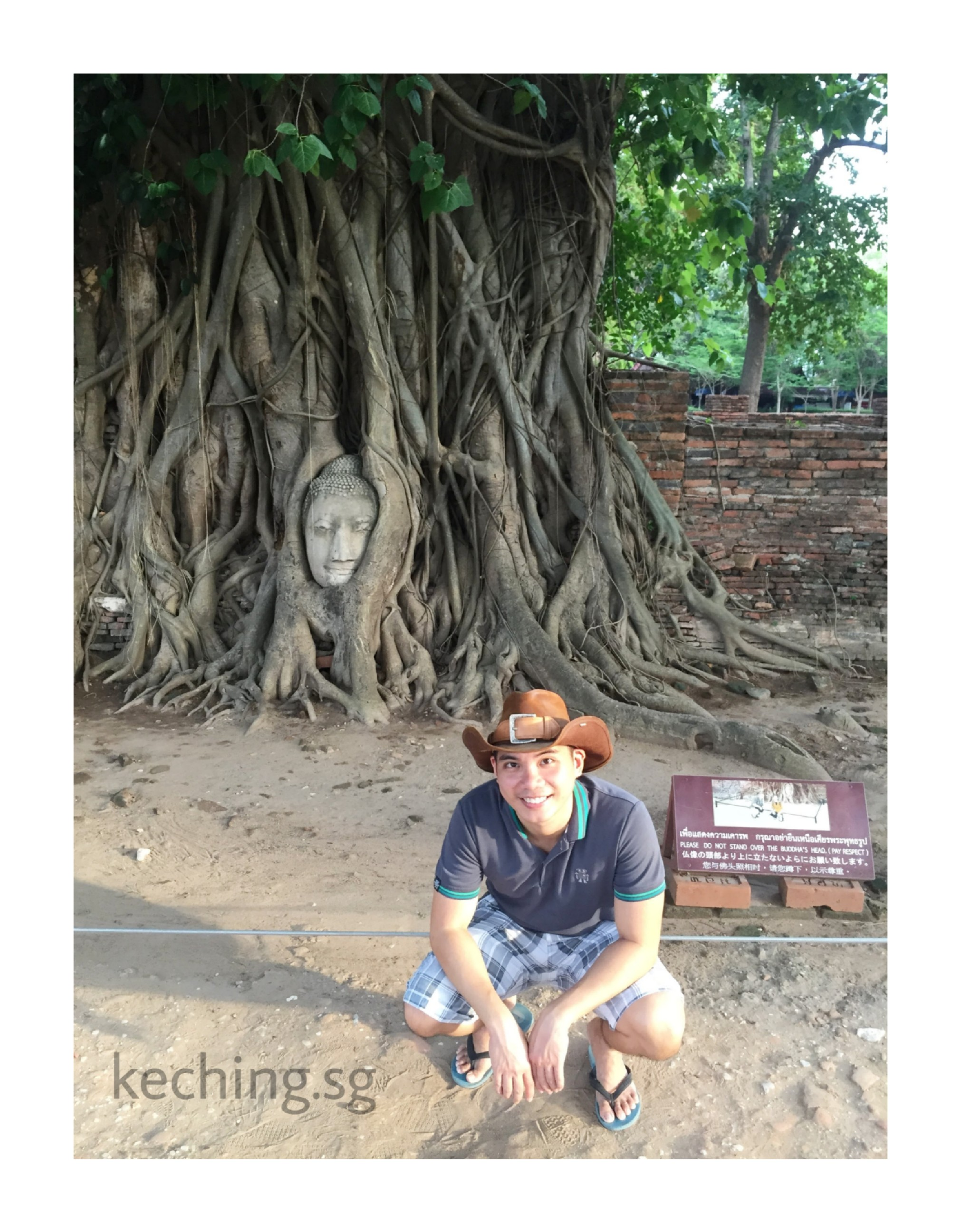 ayutthaya head in tree