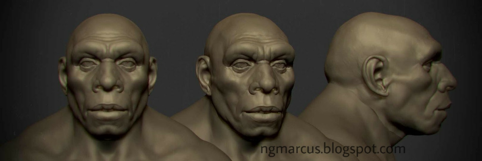 neanderthal face