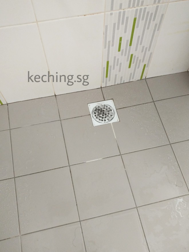 hdb toilet grout